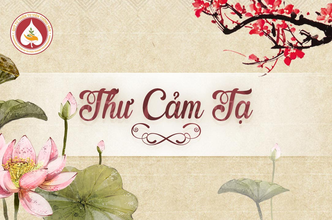 Image result for Thư cảm tạ