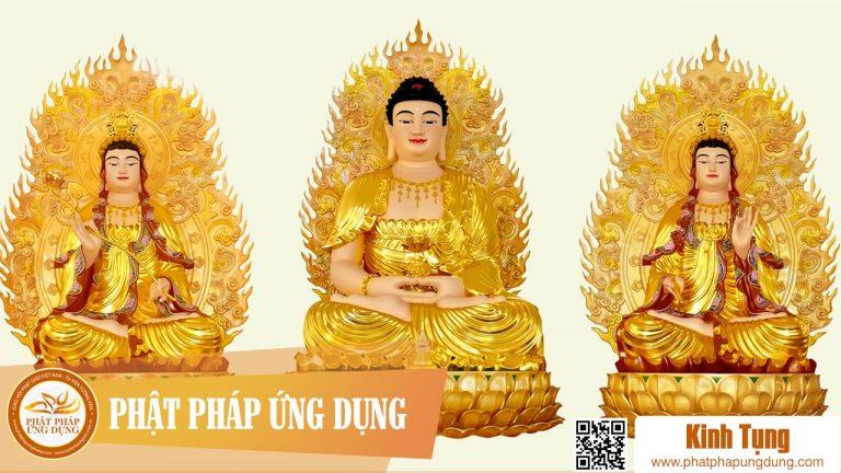 Kinh Phật Đảnh Tôn Thắng Đà Ra Ni – Thầy Thích Huệ Duyên Tụng