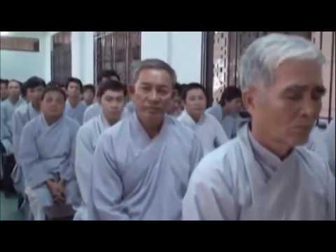Ba Điều Luật Của Oanh Vũ GDPT – VN Trong Con Mắt Thiền Quán – Thích Thái Hòa