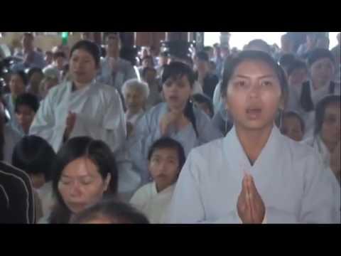 Bước Tới Chân Trời Phước Đức Và Tự Do 2 – Thích Thái Hòa