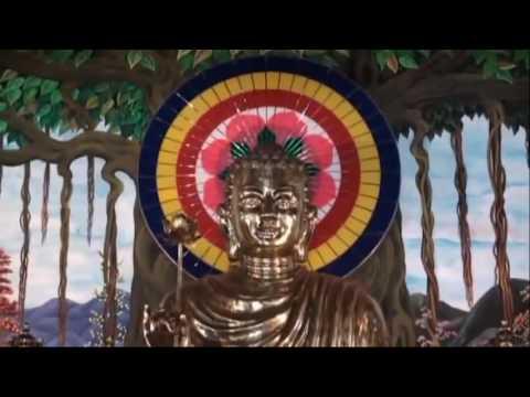 Đạo Phật Với Thanh Niên – Thích Thái Hòa