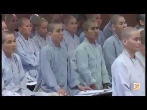 Giáo Nghĩa Trong Kinh Tạng Nguyên Thủy Phần 1 – Thích Viên Trí