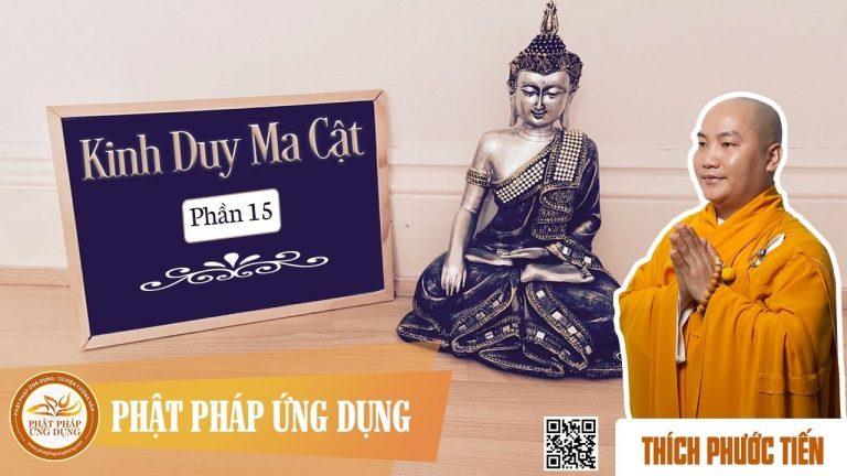 """Kinh Duy Ma Cật phần 15: phẩm """"Phật Hương Tích"""" – Thích Phước Tiến"""
