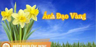 Ánh Đạo Vàng - Mai Quốc Huy | Phật Pháp Ứng Dụng