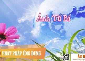 Ánh Từ Bi - Nam Cường   Phật Pháp Ứng Dụng