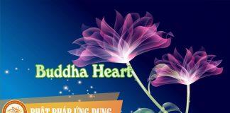 Buddha Heart | Phật Pháp Ứng Dụng