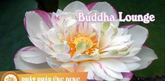 Buddha Lounge | Phật Pháp Ứng Dụng