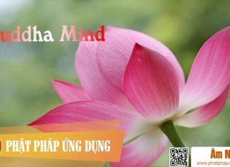 Buddha Mind Chinese Buddhist | Phật Pháp Ứng Dụng