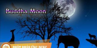 Buddha Moon | Phật Pháp Ứng Dụng