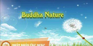 Buddha Nature Deuter | Phật Pháp Ứng Dụng