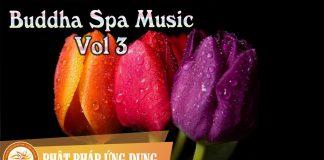 Buddha Spa Music Vol 1 | Phật Pháp Ứng Dụng 3