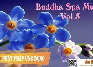 Buddha Spa Music Vol 1 | Phật Pháp Ứng Dụng 5