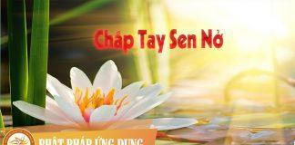Chắp Tay Sen Nở - Đặng Thế Luân | Phật Pháp Ứng Dụng