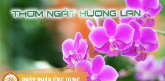 Thơm Ngát Hương Lan - Sách Nói (Audio Books) | Phật Pháp Ứng Dụng