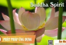 Am-Nhac-Phat-Giao-Buddha-Spirit-I-Phat-Phap-Ung-Dung