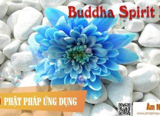 Am-Nhac-Phat-Giao-Buddha-Spirit-Iii-Phat-Phap-Ung-Dung