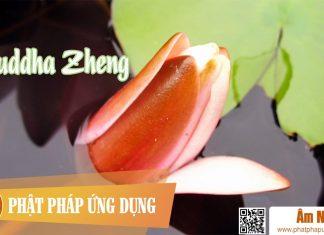 Am-Nhac-Phat-Giao-Buddha-Zheng-(phat-Tranh)-Phat-Phap-Ung-Dung