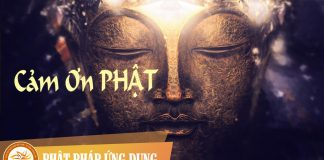 Am-Nhac-Phat-Giao-Cam-On-Phat-Phat-Phap-Ung-Dung