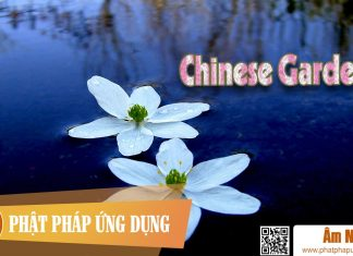 Am-Nhac-Phat-Giao-Chinese-Garden-Phat-Phap-Ung-Dung
