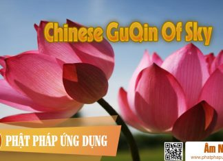 Am-Nhac-Phat-Giao-Chinese-Guqin-Of-Sky-(co-Cam)-Phat-Phap-Ung-Dung