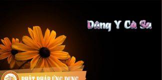 Am-Nhac-Phat-Giao-Dang-Y-Ca-Sa-Phat-Phap-Ung-Dung