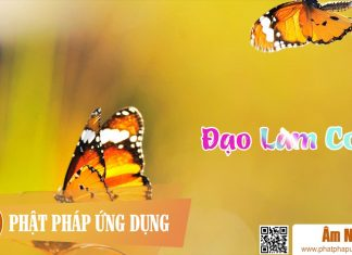 Am-Nhac-Phat-Giao-Dao-Lam-Con-Phat-Phap-Ung-Dung