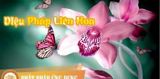 Am-Nhac-Phat-Giao-Dieu-Phap-Lien-Hoa-Phat-Phap-Ung-Dung