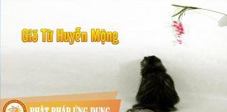 Am-Nhac-Phat-Giao-Gia-Tu-Huyen-Mong-Phat-Phap-Ung-Dung