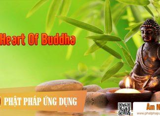 Am-Nhac-Phat-Giao-Heart-Of-Buddha-Phat-Phap-Ung-Dung