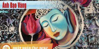 Ánh Đạo Vàng - Sách Nói (Audio Books)