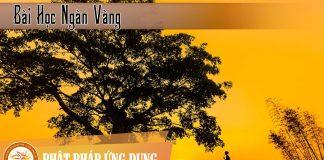 Bài Học Ngàn Vàng - HT Thích Thiện Hoa - Sách Nói (Audio Books)