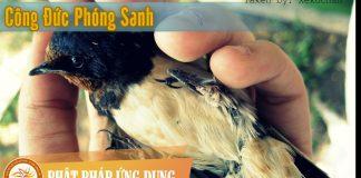 Công Đức Phóng Sanh - Sách Nói (Audio Books)