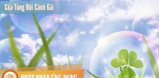 Cửa Tùng Đôi Cánh Gài - HT Thích Nhất Hạnh - Sách Nói (Audio Books)