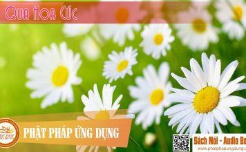 Đi Qua Hoa Cúc - Nguyễn Nhật Ánh - Sách Nói (Audio Books)