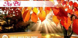 Hạ Đỏ - Nguyễn Nhật Ánh - Sách Nói (Audio Books)