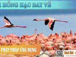 Khi Hồng Hạc Bay Về - HT Thích Huyền Diệu - Sách Nói (Audio Books)