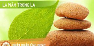 Lá Nằm Trong Lá - Nguyễn Nhật Ánh - Sách Nói (Audio Books)