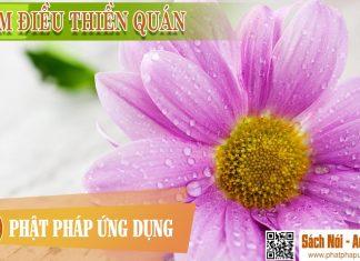 Trăm Điều Thiền Quán - Sách Nói (Audio Books)