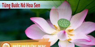 Từng Bước Nở Hoa Sen - HT Thích Nhất Hạnh - Sách Nói (Audio Books)