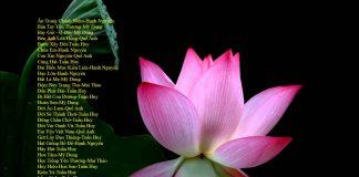 Những bài hát tân nhạc Phật giáo chọn lọc - Vol 1 | Phật Pháp Ứng Dụng