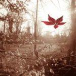 Chết an lạc tái sinh hoan hỷ (Chương 8)