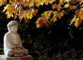 Các tông phái đạo Phật (Phần 2)