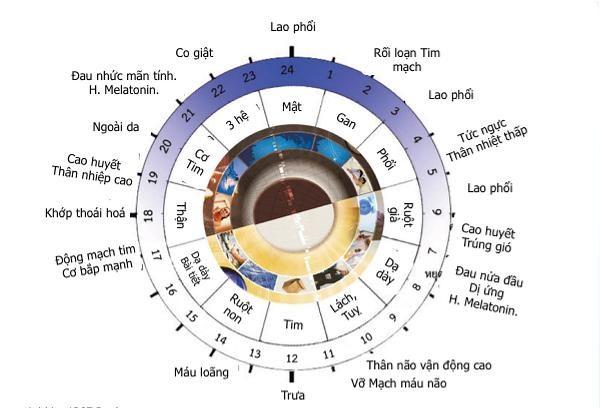 Đồng hồ sức khỏe và nếp sống nhà Phật