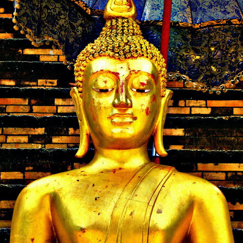 Đức Phật Trong Cái Nhìn Của Các Nhà Khoa Học