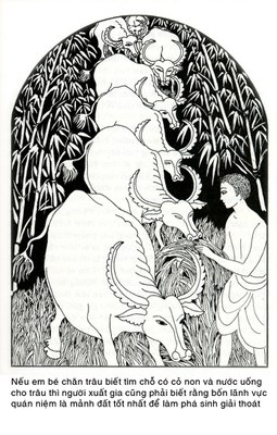 Đường Xưa Mây Trắng - Chương 02: Nghệ thuật chăn trâu