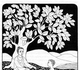 Đường Xưa Mây Trắng - Chương 03: Mớ cỏ Kusa