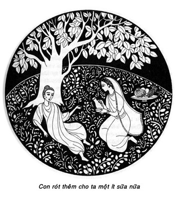 Đường Xưa Mây Trắng - Chương 05: Bát sữa cứu mạng