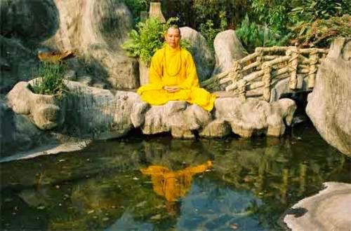 Hòa nhập Phật Pháp vào trong đời sống của chúng ta