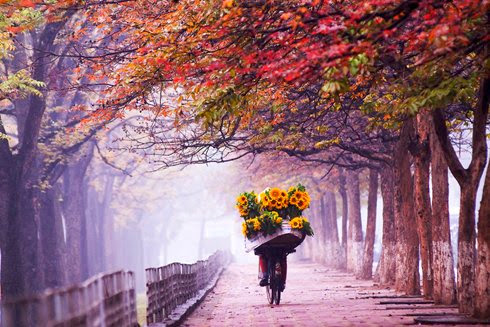 Lặng thầm với mùa thu