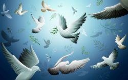 Tâm bình thế giới bình - Tâm an cảnh sẽ an (Phần 3)
